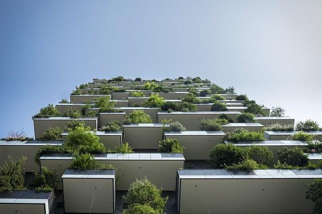 plantes sur balcon plein sud