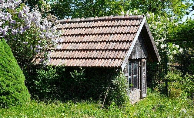 bel abri de jardin en bois