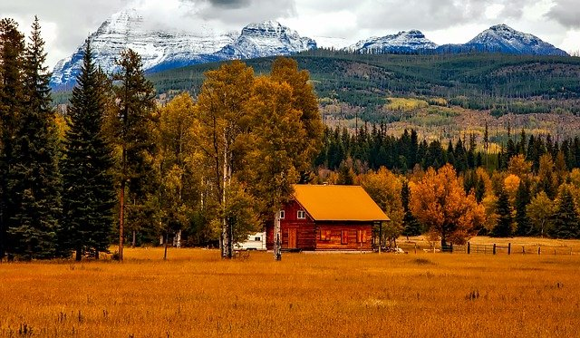maison en bois en automne